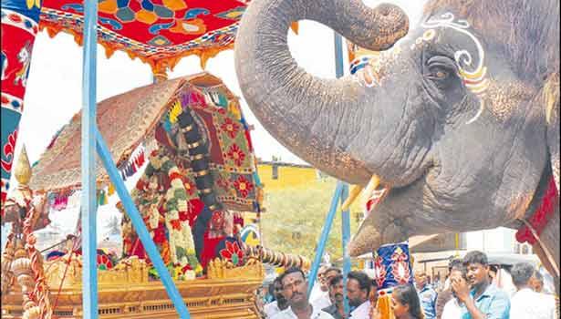 கோவில் யானை ராமலட்சுமி தும்பிக்கையை உயர்த்தி அம்பாளை வணங்கிய காட்சி.