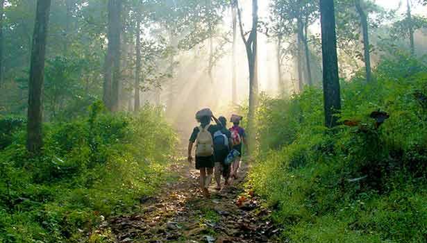 மலைப்பாதை வழியாக பக்தர்கள் யாத்திரை