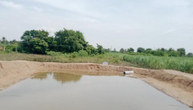 திருவண்ணாமலை மாவட்டத்தில் அமைக்கப்பட்டுள்ள பண்ணை குட்டைகள்